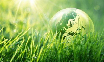 Quel-secteur-choisir-pour-garantir-la-rentabilite-d-un-placement-ecologique-.jpg